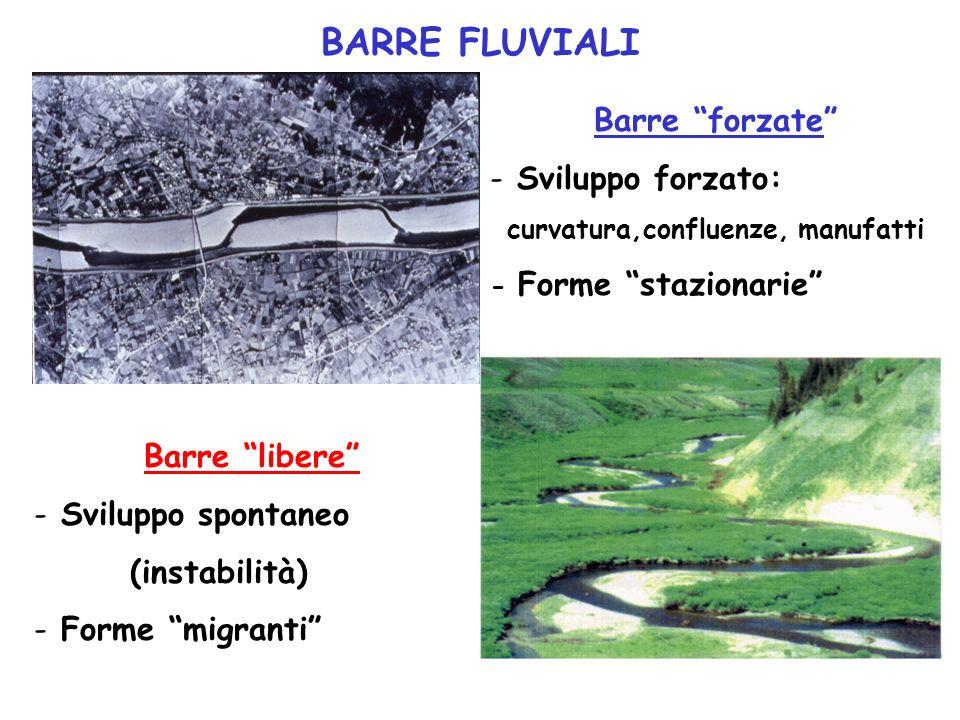 BARRE FLUVIALI Barre forzate - Sviluppo forzato: curvatura,confluenze, manufatti - Forme stazionarie Barre libere - Sviluppo spontaneo (instabilità) -