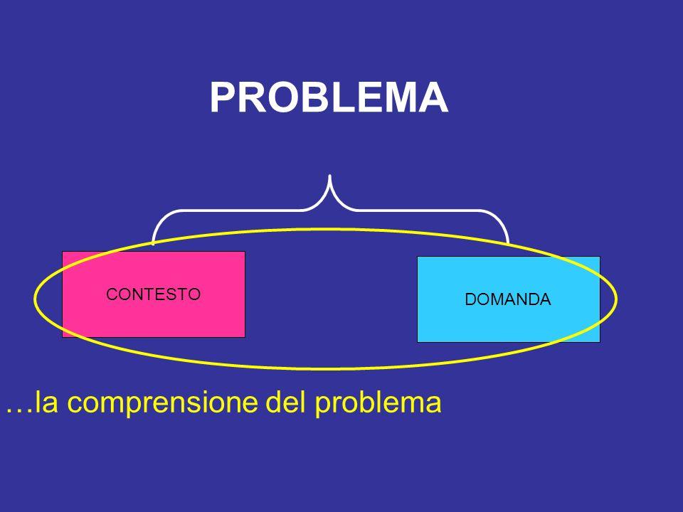 CONTESTO DOMANDA PROBLEMA …la comprensione del problema