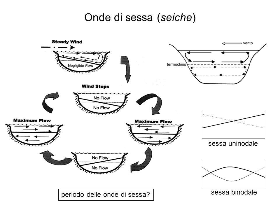 Onde di sessa (seiche) sessa uninodale sessa binodale periodo delle onde di sessa?