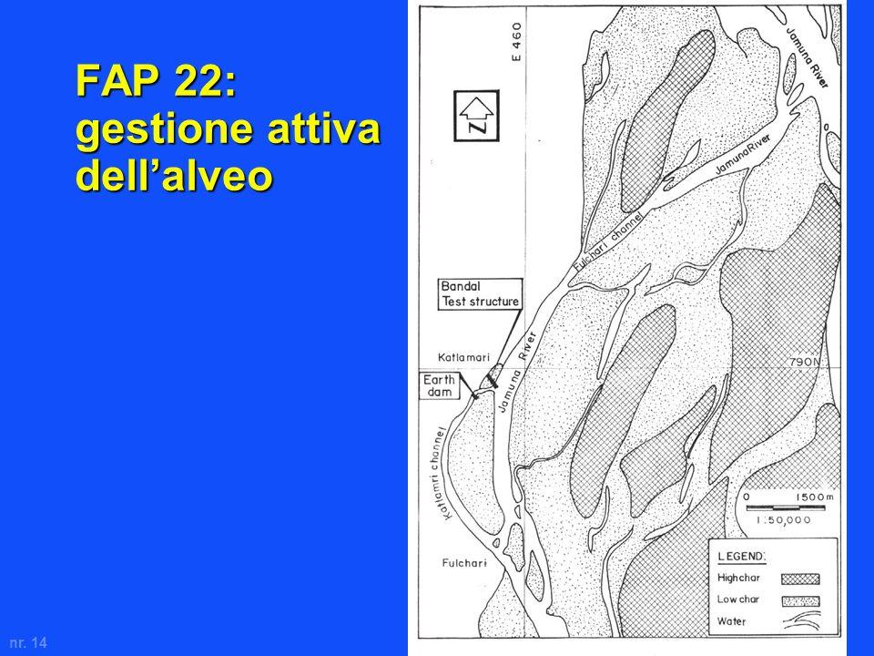 nr. 14 FAP 22: gestione attiva dellalveo