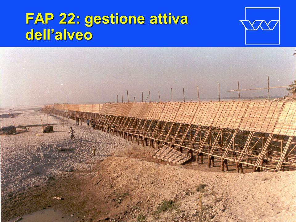 nr. 15 FAP 22: gestione attiva dellalveo