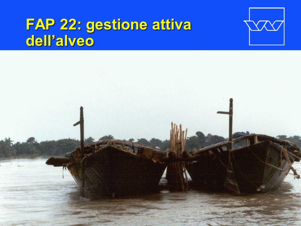 nr. 18 FAP 22: gestione attiva dellalveo