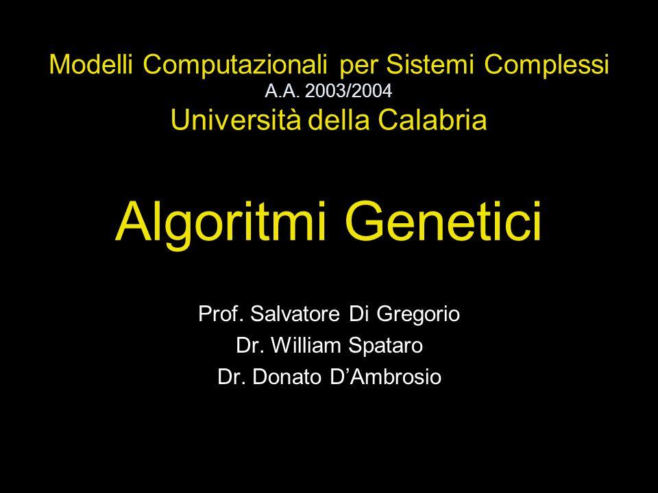 Algoritmi Genetici Prof. Salvatore Di Gregorio Dr. William Spataro Dr. Donato DAmbrosio Modelli Computazionali per Sistemi Complessi A.A. 2003/2004 Un