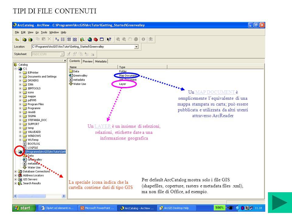 TIPI DI FILE CONTENUTI La speciale icona indica che la cartella contiene dati di tipo GIS Per default ArcCatalog mostra solo i file GIS (shapefiles, c