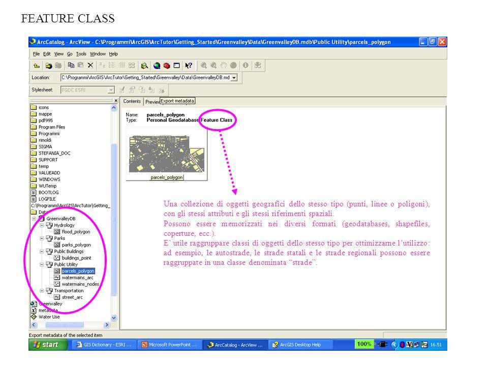 FEATURE CLASS Una collezione di oggetti geografici dello stesso tipo (punti, linee o poligoni), con gli stessi attributi e gli stessi riferimenti spaz