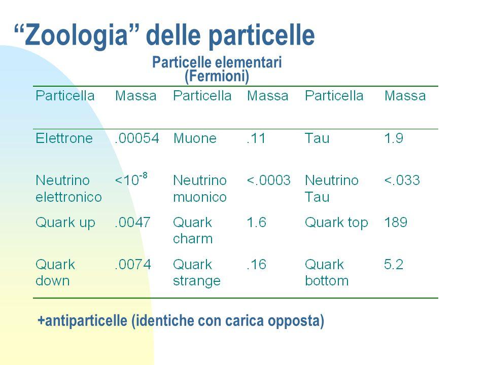 Zoologia delle particelle Particelle elementari (Fermioni) +antiparticelle (identiche con carica opposta)