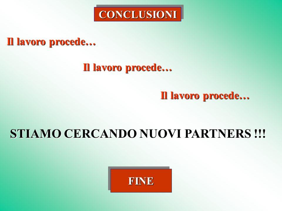 CONCLUSIONICONCLUSIONI FINE Il lavoro procede… STIAMO CERCANDO NUOVI PARTNERS !!!