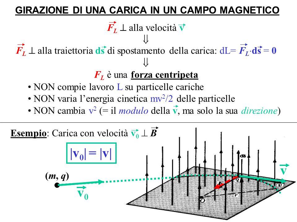 Moto circolare uniforme con Il raggio dellorbita è: La velocità angolareè detta frequenza ciclotronica GIRAZIONE DI UNA CARICA IN UN CAMPO UNIFORME (i) Sia nuovamente v 0 B a centr FLFL v 0 2 /r