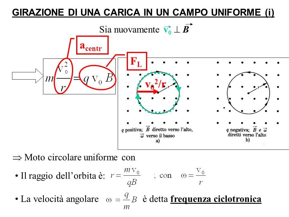 GIRAZIONE DI UNA CARICA IN UN CAMPO UNIFORME (ii) Il vettore velocità v 0 può essere scomposto in 2 componenti: Siano ora v 0 e B (uniforme) qualunque (= non necess.