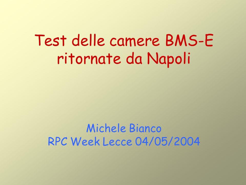 Test delle camere BMS-E ritornate da Napoli Michele Bianco RPC Week Lecce 04/05/2004