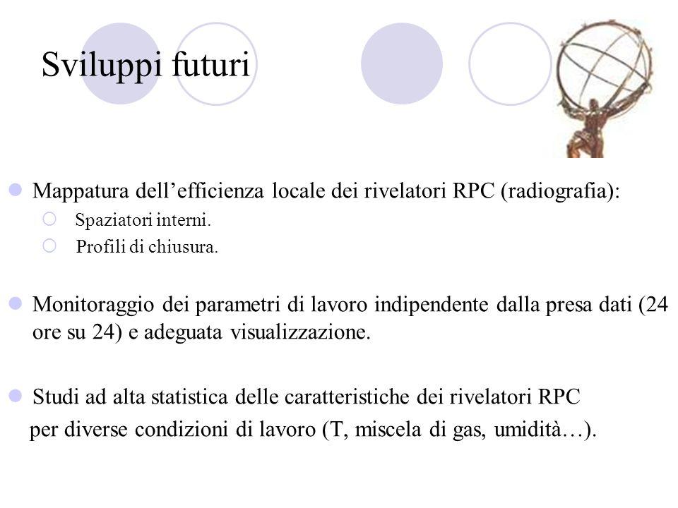 Sviluppi futuri Mappatura dellefficienza locale dei rivelatori RPC (radiografia): Spaziatori interni. Profili di chiusura. Monitoraggio dei parametri