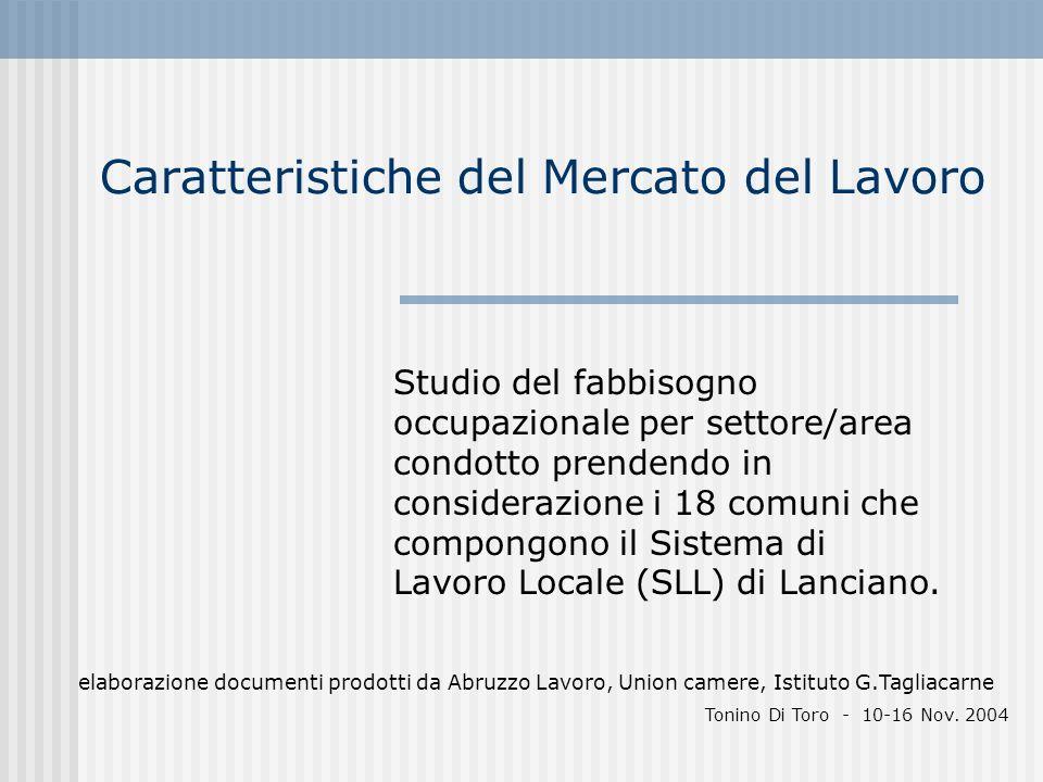 Caratteristiche del Mercato del Lavoro Studio del fabbisogno occupazionale per settore/area condotto prendendo in considerazione i 18 comuni che compo