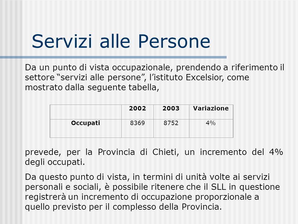 Servizi alle Persone 20022003Variazione Occupati8369 8752 4% Da un punto di vista occupazionale, prendendo a riferimento il settore servizi alle perso