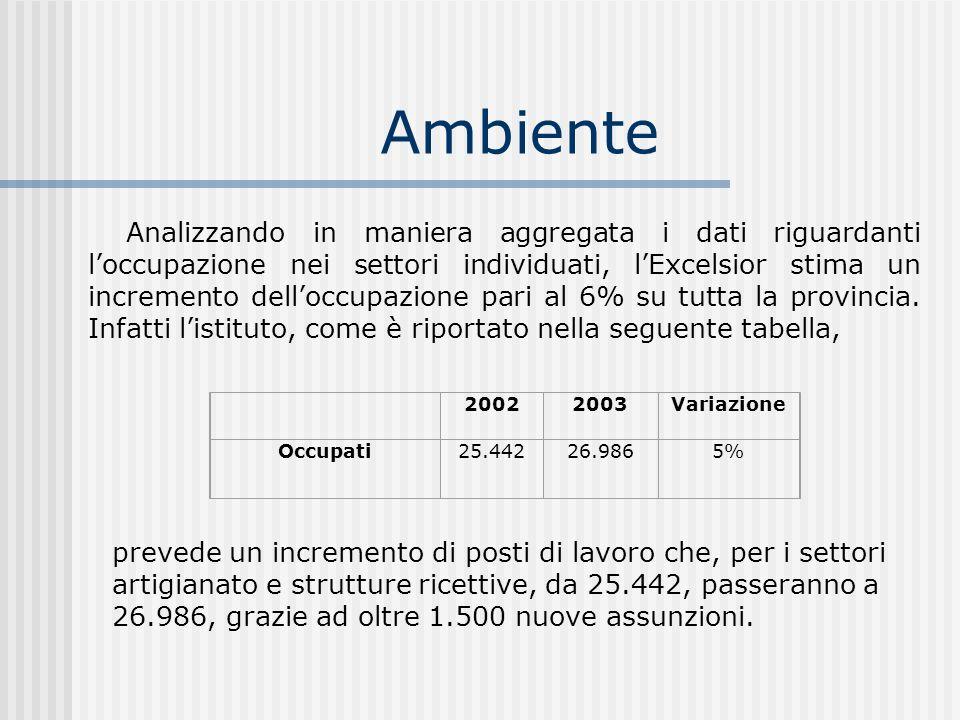 Ambiente 20022003Variazione Occupati25.442 26.986 5% Analizzando in maniera aggregata i dati riguardanti loccupazione nei settori individuati, lExcels