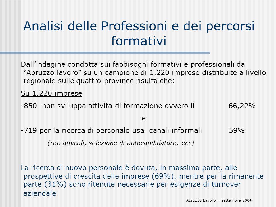 Analisi delle Professioni e dei percorsi formativi Dallindagine condotta sui fabbisogni formativi e professionali da Abruzzo lavoro su un campione di