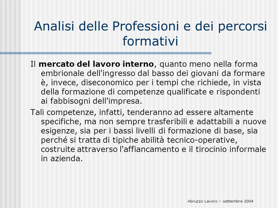 Analisi delle Professioni e dei percorsi formativi Il mercato del lavoro interno, quanto meno nella forma embrionale dell'ingresso dal basso dei giova