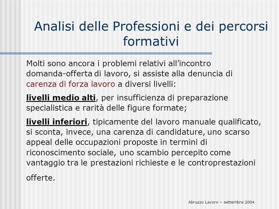 Analisi delle Professioni e dei percorsi formativi Molti sono ancora i problemi relativi allincontro domanda-offerta di lavoro, si assiste alla denunc