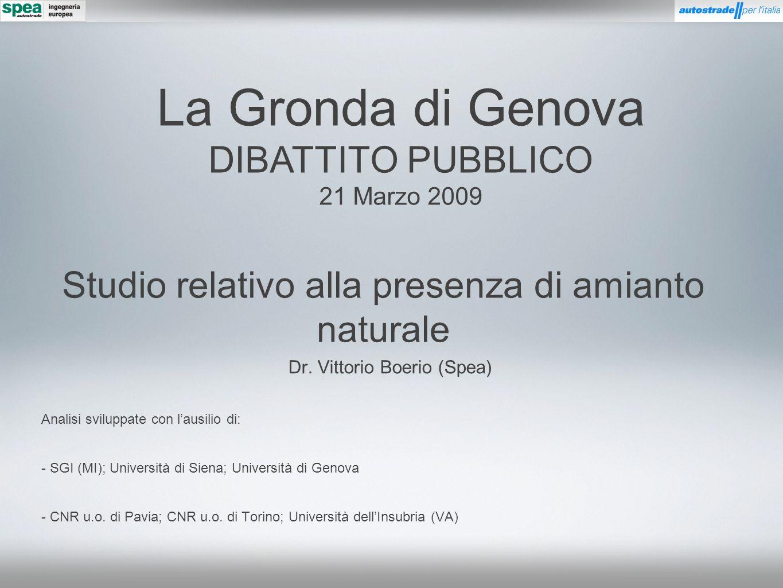 Studio relativo alla presenza di amianto naturale Dr. Vittorio Boerio (Spea) Analisi sviluppate con lausilio di: - SGI (MI); Università di Siena; Univ