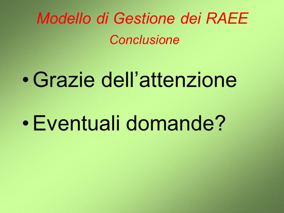 Modello di Gestione dei RAEE Conclusione Grazie dellattenzione Eventuali domande?