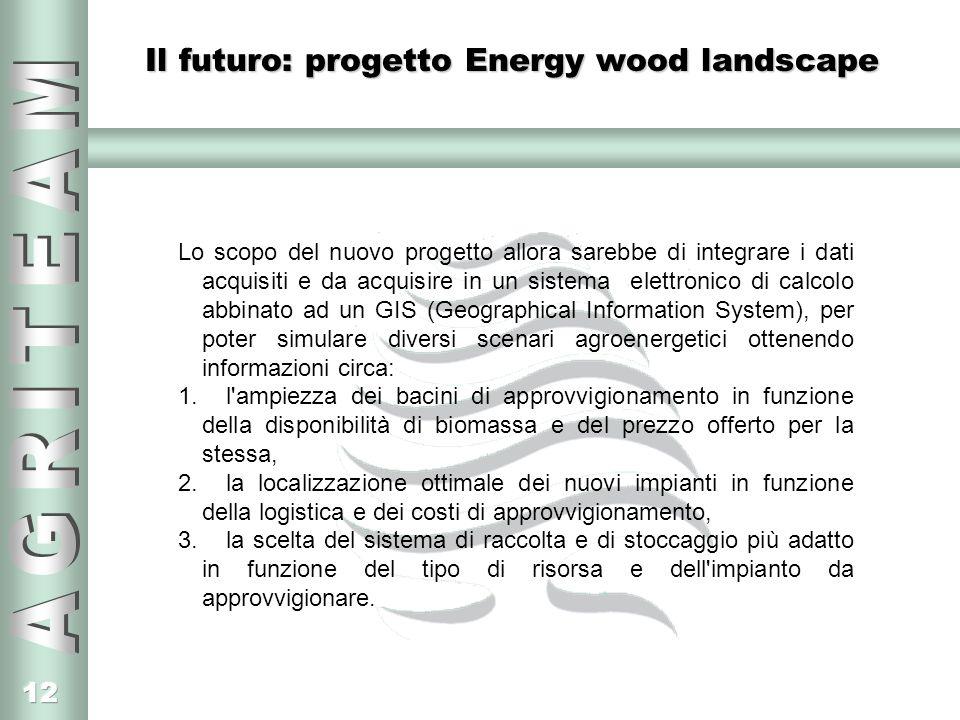 12 Il futuro: progetto Energy wood landscape Lo scopo del nuovo progetto allora sarebbe di integrare i dati acquisiti e da acquisire in un sistema ele