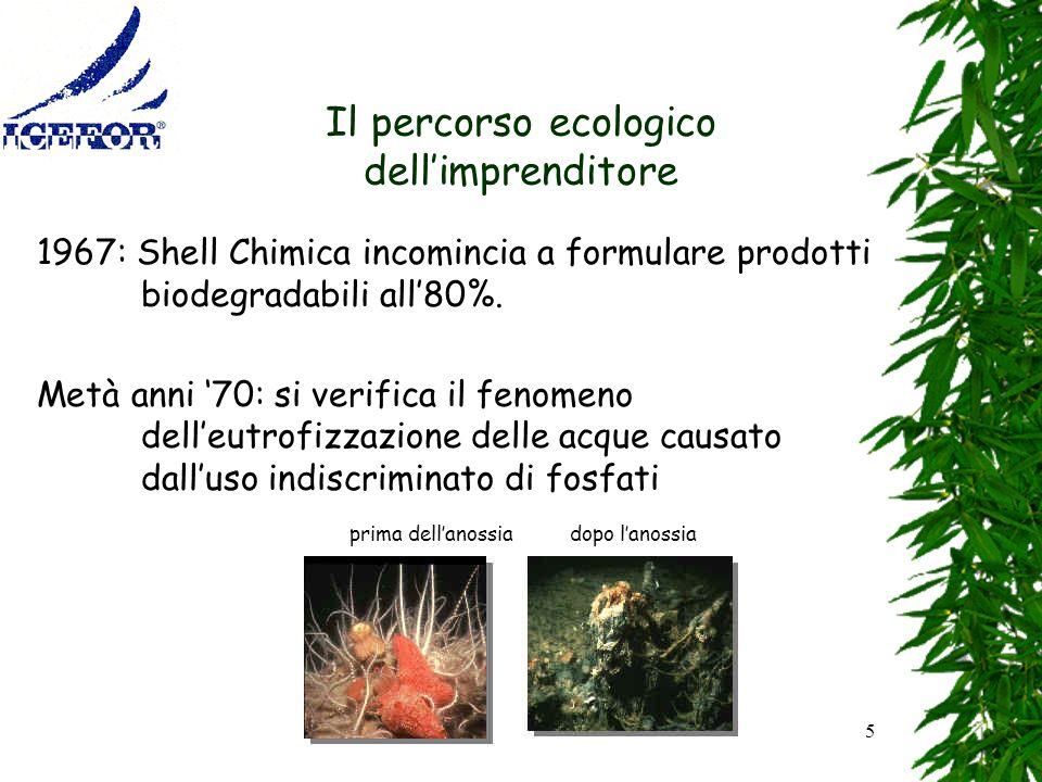 5 Il percorso ecologico dellimprenditore 1967: Shell Chimica incomincia a formulare prodotti biodegradabili all80%. Metà anni 70: si verifica il fenom