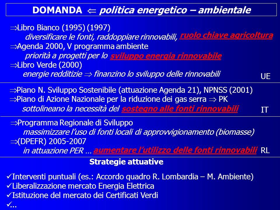 DOMANDA politica energetico – ambientale Libro Bianco (1995) (1997) diversificare le fonti, raddoppiare rinnovabili, Agenda 2000, V programma ambiente priorità a progetti per lo Libro Verde (2000) energie redditizie finanzino lo sviluppo delle rinnovabili Piano N.