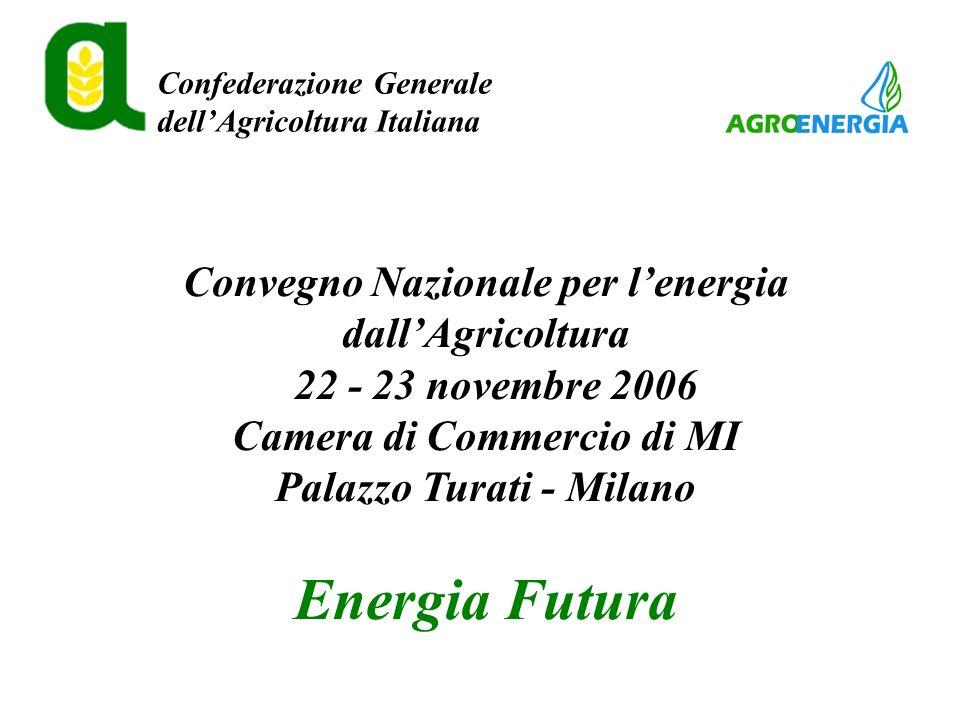Confederazione Generale dellAgricoltura Italiana Convegno Nazionale per lenergia dallAgricoltura 22 - 23 novembre 2006 Camera di Commercio di MI Palazzo Turati - Milano Energia Futura