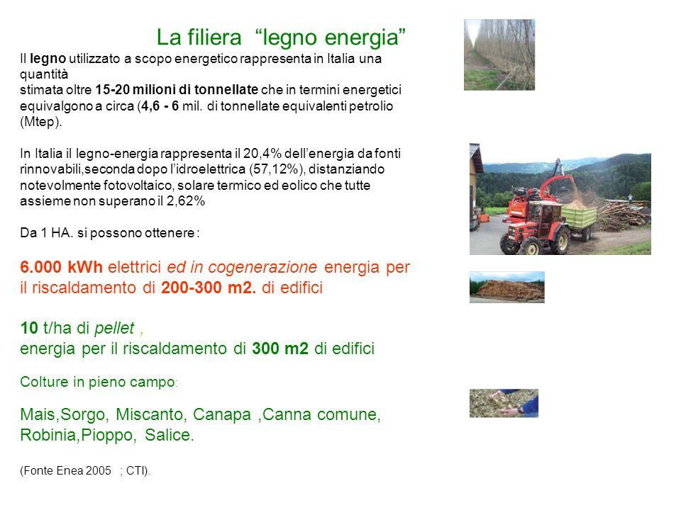 La filiera legno energia Il legno utilizzato a scopo energetico rappresenta in Italia una quantità stimata oltre 15-20 milioni di tonnellate che in termini energetici equivalgono a circa (4,6 - 6 mil.