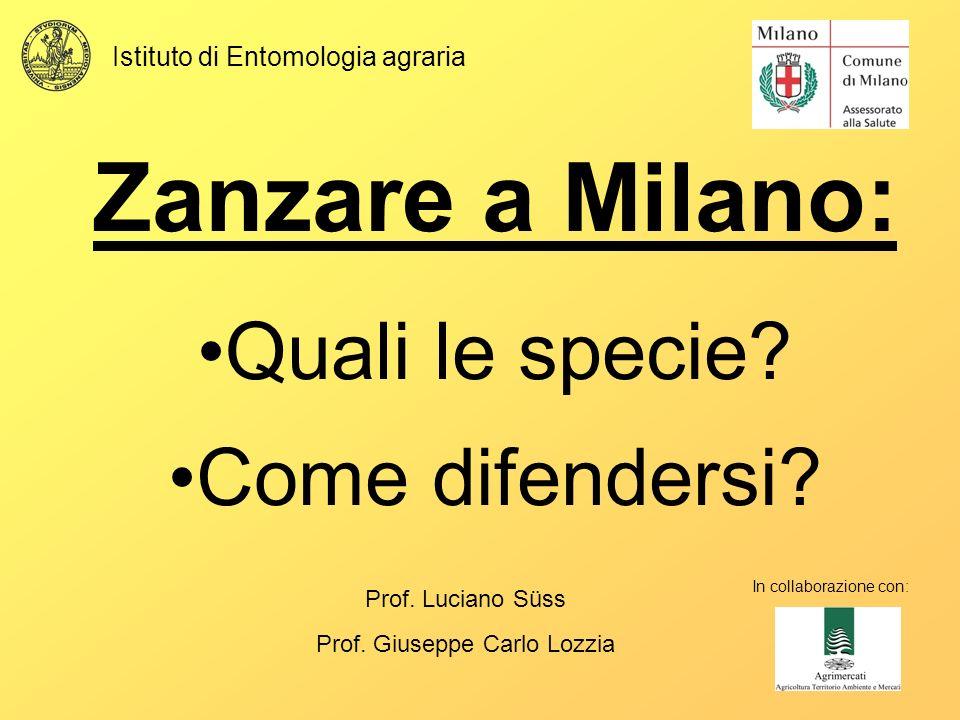 Zanzare a Milano: Quali le specie? Come difendersi? In collaborazione con: Prof. Luciano Süss Prof. Giuseppe Carlo Lozzia Istituto di Entomologia agra