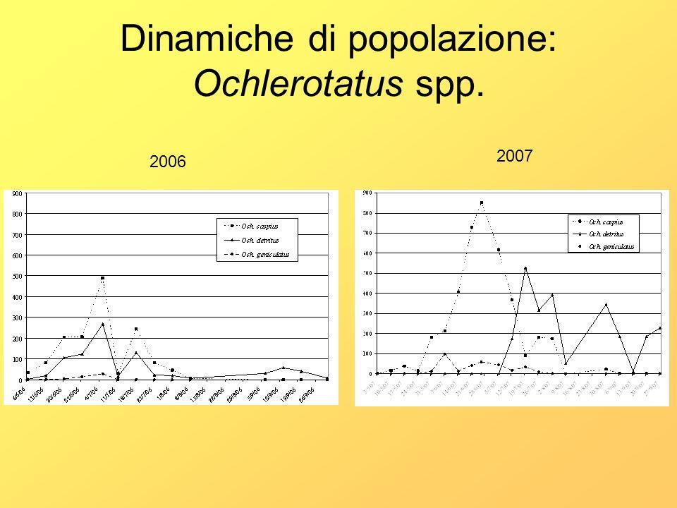 Dinamiche di popolazione: Ochlerotatus spp. 2006 2007