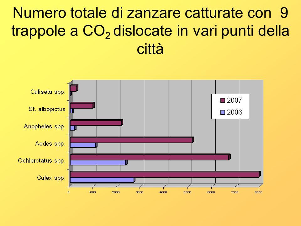 Numero totale di zanzare catturate con 9 trappole a CO 2 dislocate in vari punti della città