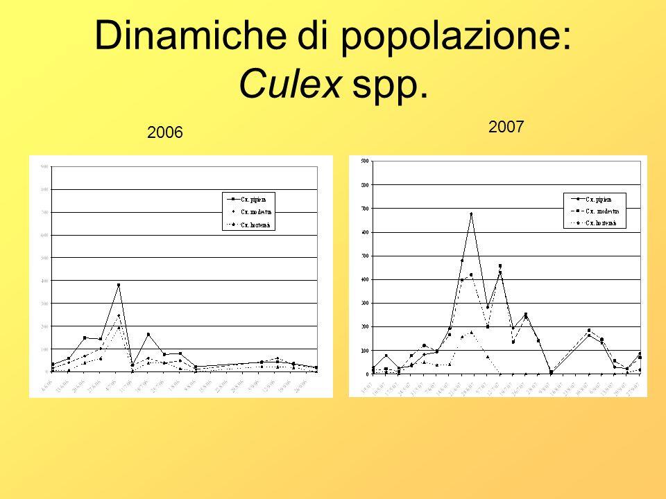 Dinamiche di popolazione: Culex spp. 2006 2007