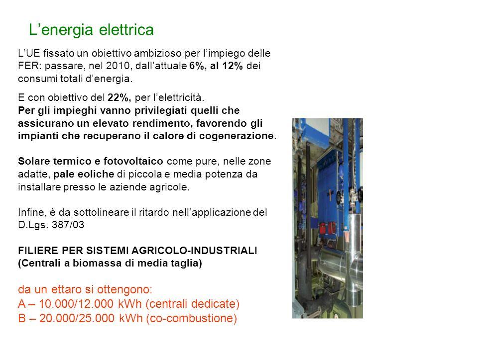 Lenergia elettrica LUE fissato un obiettivo ambizioso per limpiego delle FER: passare, nel 2010, dallattuale 6%, al 12% dei consumi totali denergia. E