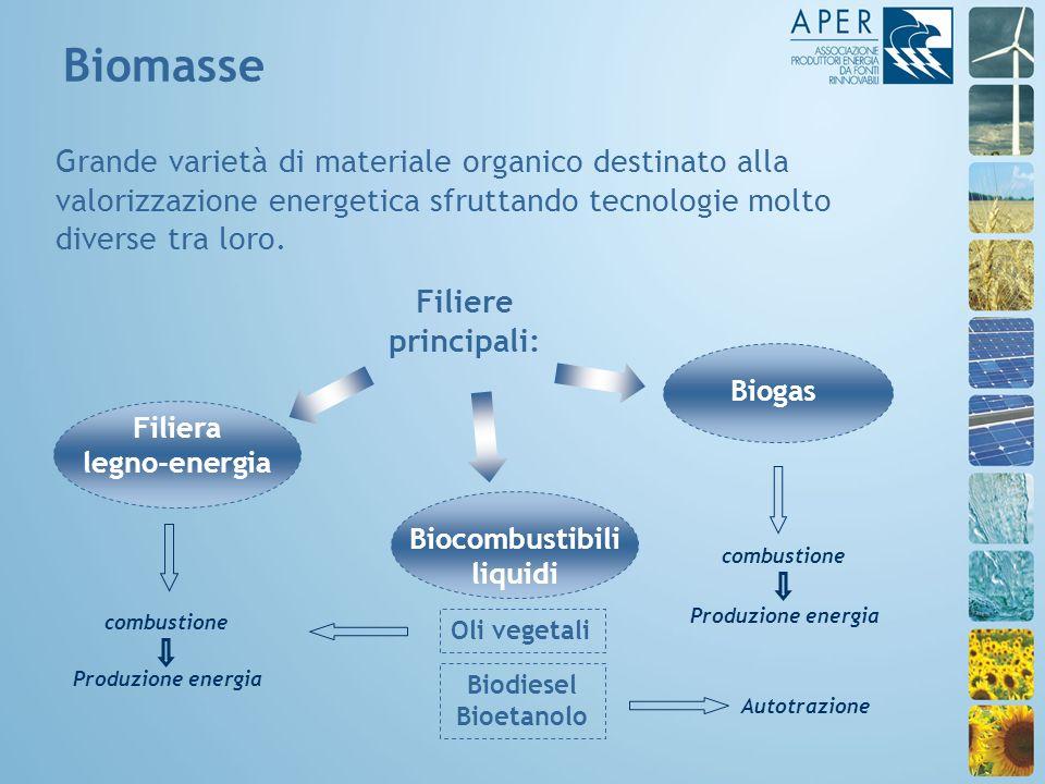 Grande varietà di materiale organico destinato alla valorizzazione energetica sfruttando tecnologie molto diverse tra loro.