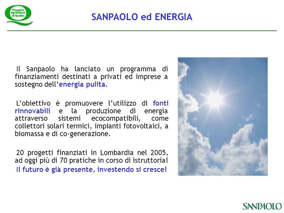 Il Sanpaolo ha lanciato un programma di finanziamenti destinati a privati ed imprese a sostegno dellenergia pulita.