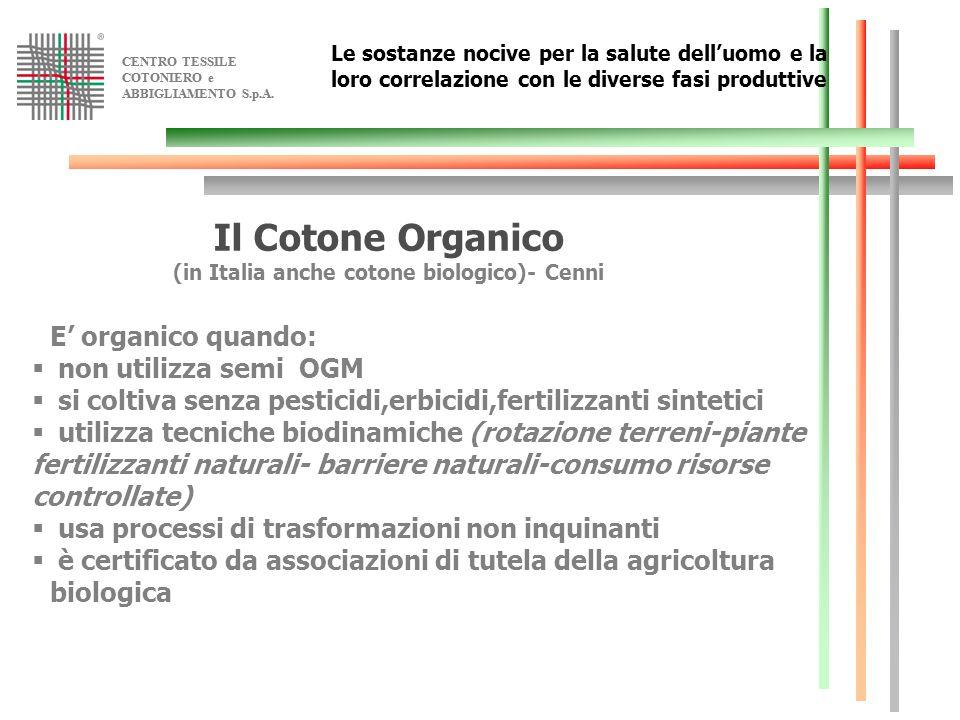 CENTRO TESSILE COTONIERO e ABBIGLIAMENTO S.p.A. CENTRO TESSILE COTONIERO e ABBIGLIAMENTO S.p.A. Le sostanze nocive per la salute delluomo e la loro co