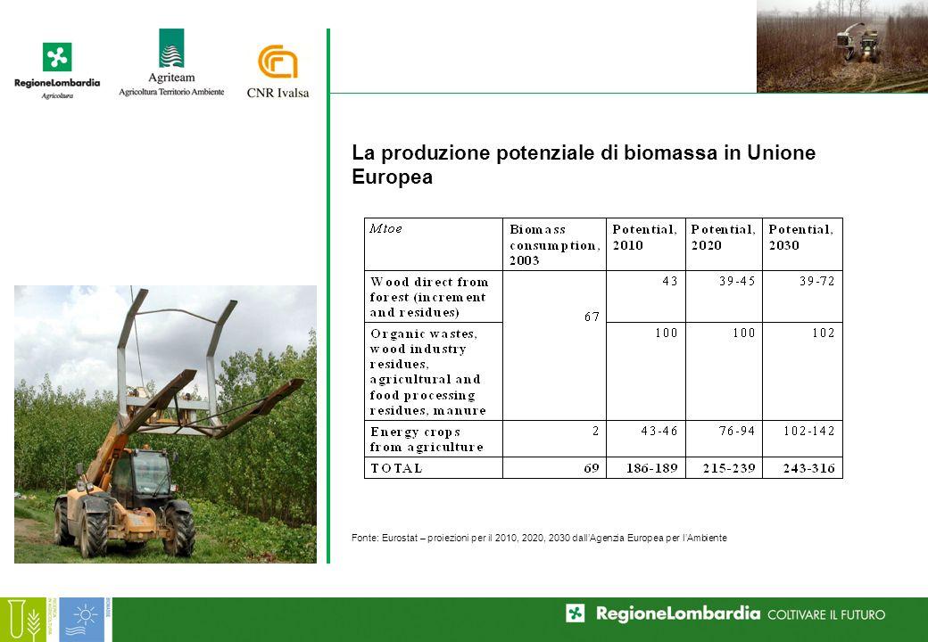 La produzione potenziale di biomassa in Unione Europea Fonte: Eurostat – proiezioni per il 2010, 2020, 2030 dallAgenzia Europea per lAmbiente