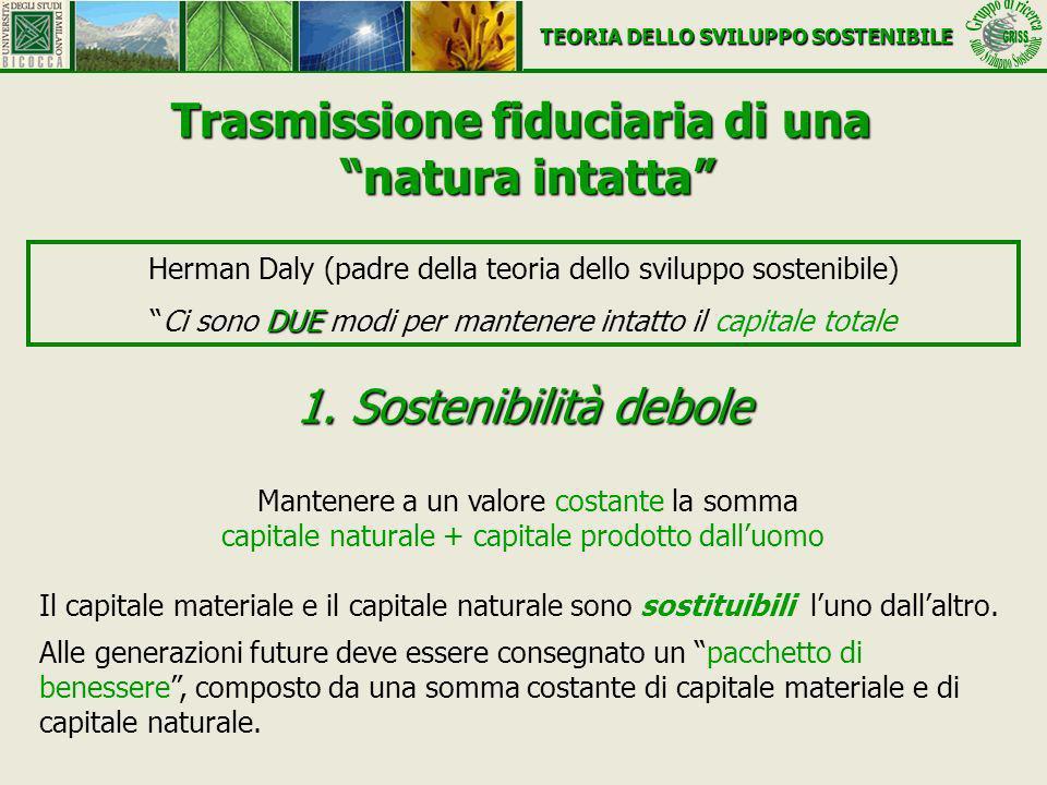 1. Sostenibilità debole Mantenere a un valore costante la somma capitale naturale + capitale prodotto dalluomo Il capitale materiale e il capitale nat