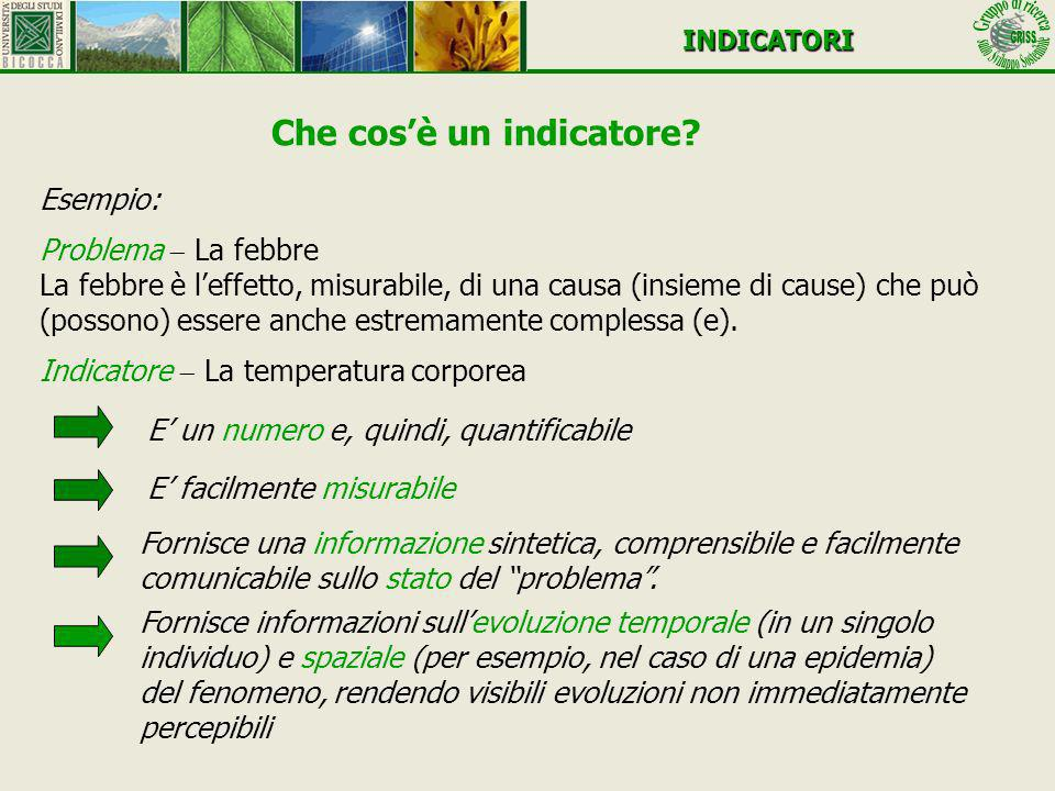 Che cosè un indicatore? INDICATORI Esempio: Problema La febbre La febbre è leffetto, misurabile, di una causa (insieme di cause) che può (possono) ess
