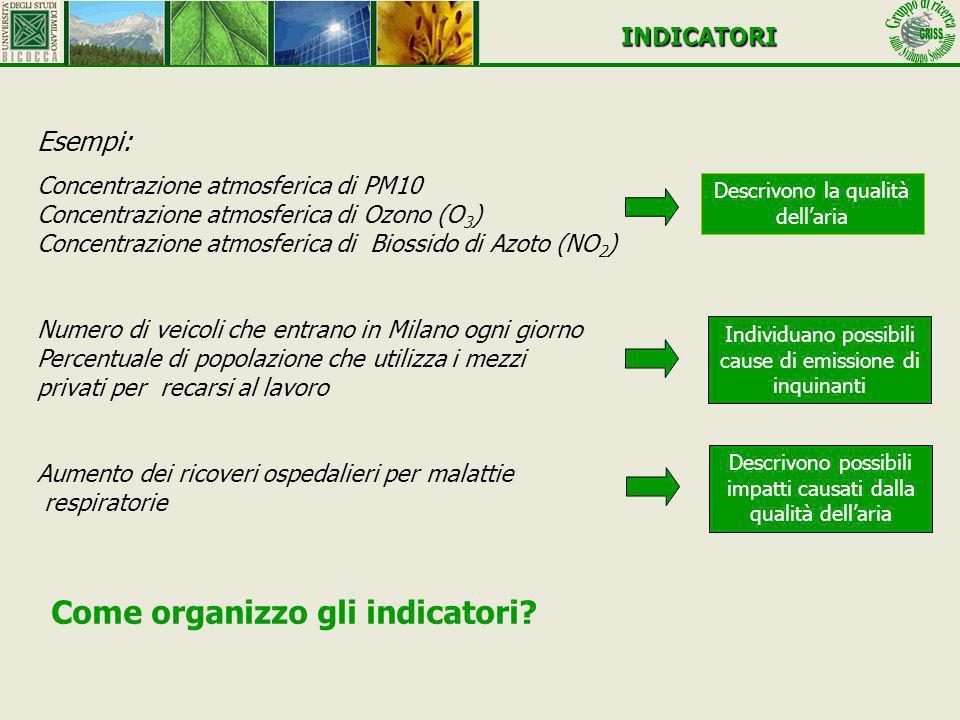 INDICATORI Esempi: Concentrazione atmosferica di PM10 Concentrazione atmosferica di Ozono (O 3 ) Concentrazione atmosferica di Biossido di Azoto (NO 2
