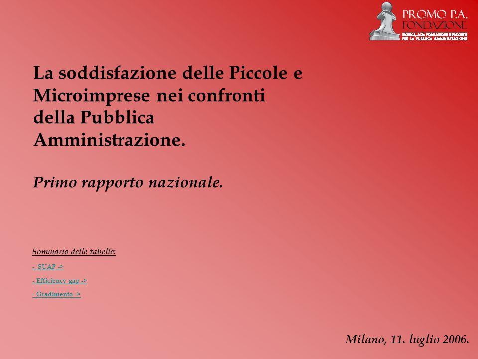 La soddisfazione delle Piccole e Microimprese nei confronti della Pubblica Amministrazione. Primo rapporto nazionale. Milano, 11. luglio 2006. Sommari