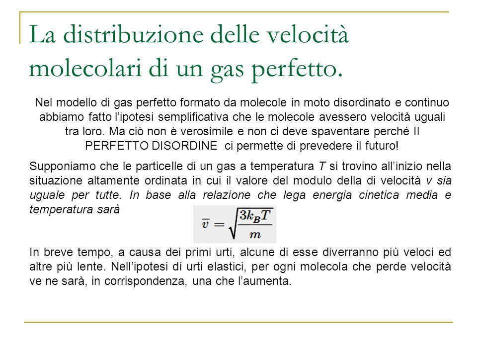 La distribuzione delle velocità molecolari di un gas perfetto. Nel modello di gas perfetto formato da molecole in moto disordinato e continuo abbiamo