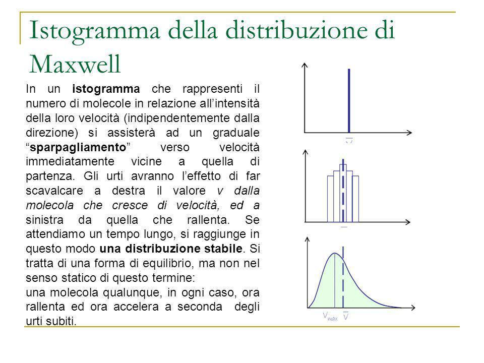 Istogramma della distribuzione di Maxwell In un istogramma che rappresenti il numero di molecole in relazione allintensità della loro velocità (indipe