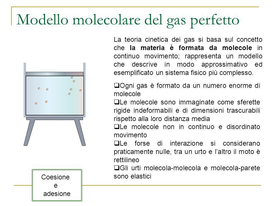 Modello molecolare del gas perfetto La teoria cinetica dei gas si basa sul concetto che la materia è formata da molecole in continuo movimento; rappre