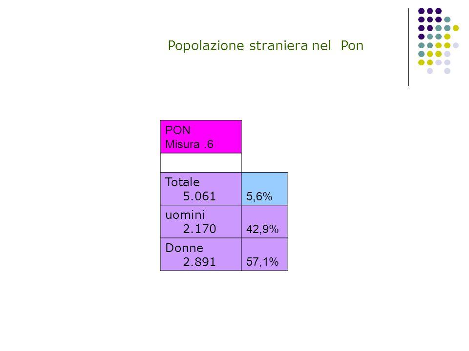 Popolazione straniera nel Pon PON Misura.6 Totale 5.061 5,6% uomini 2.170 42,9% Donne 2.891 57,1%