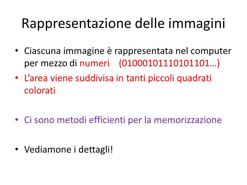 Rappresentazione delle immagini Ciascuna immagine è rappresentata nel computer per mezzo di numeri (01000101110101101…) Larea viene suddivisa in tanti