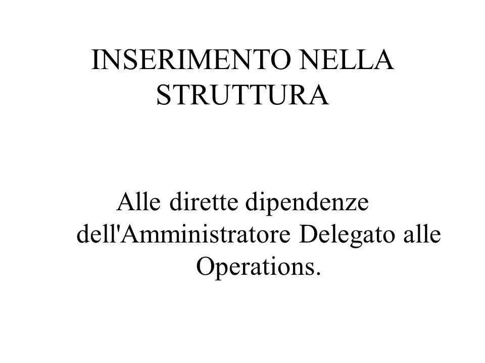 INSERIMENTO NELLA STRUTTURA Alle dirette dipendenze dell'Amministratore Delegato alle Operations.