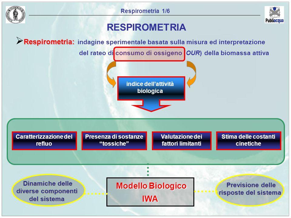 Previsione delle risposte del sistema Dinamiche delle diverse componenti del sistema Respirometria 1/6 Respirometria: Respirometria: indagine sperimen