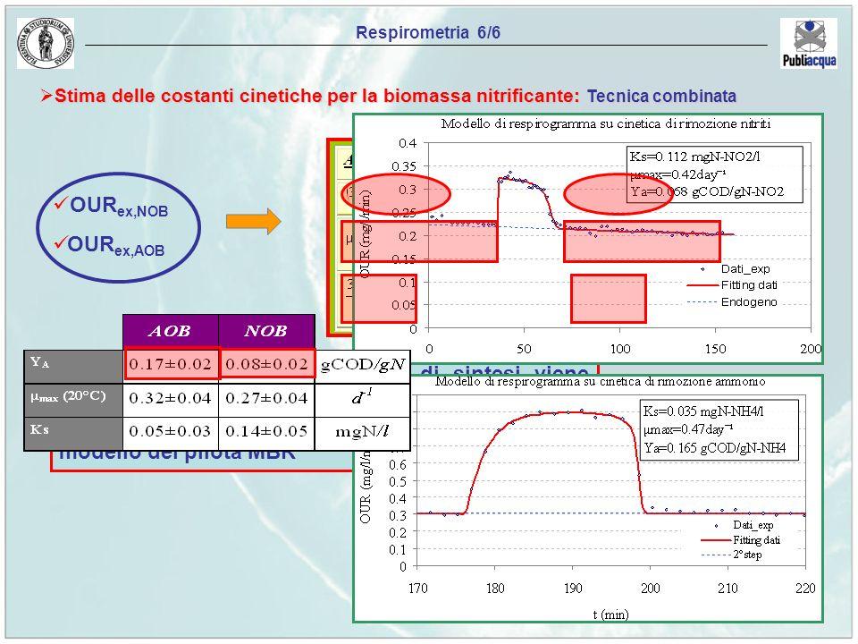 Il valore della velocità massima di sintesi viene ricavato sfruttando un processo iterativo mediante la conoscenza della biomassa attiva fornita dal m