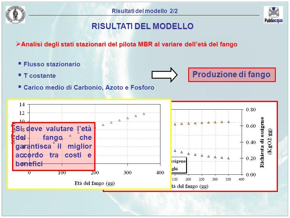 Risultati del modello 2/2 DEL MODELLO RISULTATI DEL MODELLO Analisi degli stati stazionari del pilota MBR al variare delletà del fango Flusso staziona
